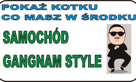 POKAŻ KOTKU … – Rozbieranko samochodu Gangam Style :)